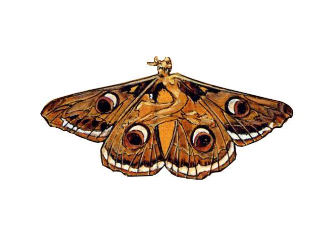 dessin-libelluleRene-Lalique
