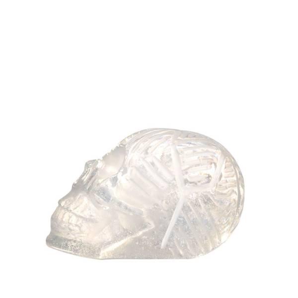 crane de cristal maya