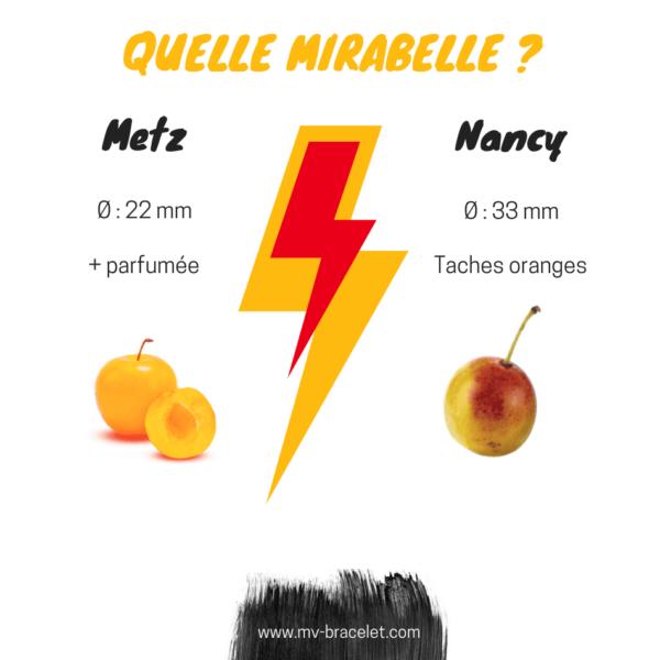 difference entre la mirabelle de nancy et la mirabelle de metz